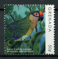 Grenada 2019 MNH Parrots Definitives Gold-Capped Conure 1v Set Birds Stamps