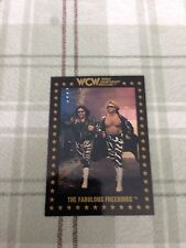 WCW Trading Cards 1991 The Fabulous Freebirds #5 Ungraded Single