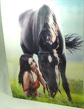 3 D Effekt Bild 39 x 29 cm Bilder Poster Pin Up Girls Pferde Natur Sexy Girl   A