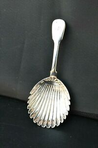 Solid Silver William 1V Tea Caddy Spoon. Shell / Scallop Shaped. Adam Elder 1831