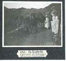 Algérie, la Kabylie, caravane de chameaux  Vintage print Tirage argentique