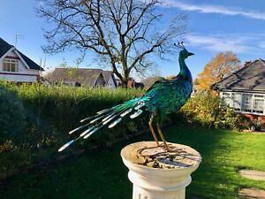 Large 64cm Exotic Bird Peacock Blue Decorative Garden Sculpture Statue Ornament