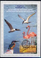 ISRAEL STAMPS 2010 40th HOF CARMEL SCHOOL BIRDS SOUVENIR LEAF CARMEL # 603