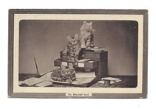 Vintage embossed postcard 'On mischief bent' fluffy tabby kittens. pmk 1912