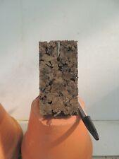 orchid / orchidee Plaque de liège compressé / Pressed coarkboard