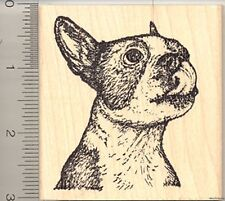 Boston Terrier Rubber Stamp, Dog Licking Lips L50312 WM