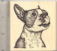 Boston Terrier Rubber Stamp, Dog Licking Lips L50312 WM