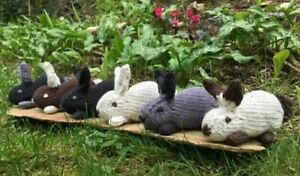 Gorgeous Knitted Bunny Rabbit Hand Crafted Gift Present Decoration in Gift Box