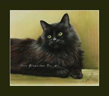 Black Cat Print Green Tones from an original by I Garmashova