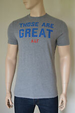 NEW Abercrombie & Fitch Indian Falls Heather Grey Humour Tee T-Shirt XL