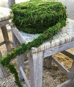 12ft Moss Vine Garland, Preserved Moss Vine Woodland Theme Decor, Trellis