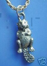 Look Sea Otter Beaver Jewelry Silver charm Pendant Jewelry