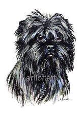 Affenpinscher Dog Art Aceo Card Print by A Borcuk