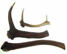 3 Red Deer Antler 1.272 kg Template Knife Dagger Door Walking Handle #3902