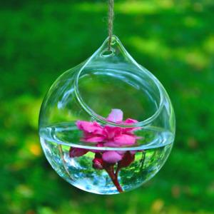 12cm Transparent Clear Glass Round Terrarium Flower Plant Stand Hanging Vase