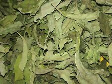 Bitter leaf- Dry; 40g freshly harvested and dried. Buy 3 get 1 free