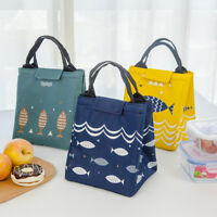 Portable Handle Lunch Bag Insulated Cooler Box for Outdoor Beach Picnic Camping
