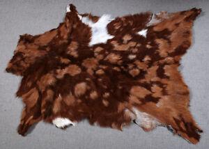"New Goat hide Rug Hair on Area Rug Size 34""x24"" Animal Leather Goat Skin U-4693"