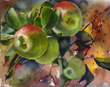 Apples Still Life Original Watercolor Painting ( 8 x 10 inches)