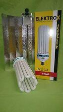 Elektrox Sparset 250 W Dual Energiesparlampe + Reflektor ESL CFL Set 2100K