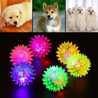 Chewing Sound Dog Cat Fun Puppy LED Light Pet Toys Ball