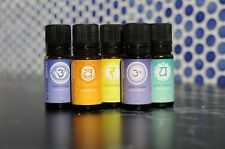 Mr Steam Bath Generators Chakra Blend Essential Aromatherapy Oils 7 Pack