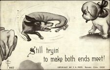 Dachshund Dog Chasing Tail FLC Clavally c1910 Postcard