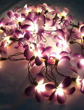 *35 FLOWER FRANGIPANI FLORAL STRING LIGHTS, FAIRY LIGHTS *CHOICE OF **8 COLORS**