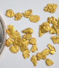 Alaskan Yukon Gold Rush Nuggets  12-10 Mesh 1 Gram of Fines