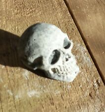 Weathered Little Skull / Garden Statue/ Decor