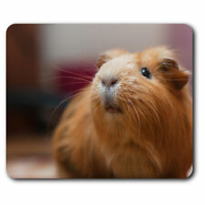 Computer Mouse Mat - Cute Ginger Guinea Pig Animals Pets Office Gift #8353