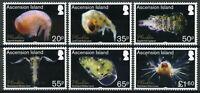Ascension Island Marine Stamps 2017 MNH Plankton Gastropod Copepod 6v Set