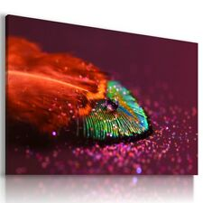 BIRD PEACOCK FEATHER Canvas Wall Art Picture Large L512  MATAGA