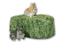 Heu 20kg 2.Schnitt Genussheu Grummet Futter Kaninchen Meerschweinchen HeuScheune
