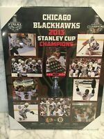 2013 Chicago Blackhawks Stanley Cup Championship Picture