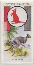 Kangaroo Australian Pouched Marsupial 1930s Ad Trade Card