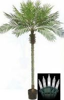 8 foot Artificial Phoenix Palm Tree Plant  in Pot & Christmas Lights Date Sago