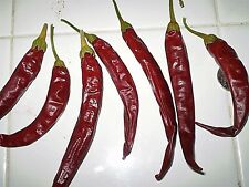 Mexican Finger Hots red chili pepper seeds NON GMO heirloom open pollinated