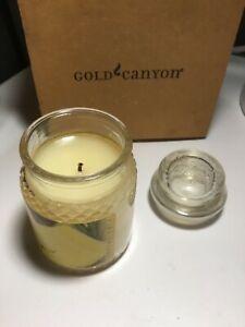 Gold Canyon Candles Discontinued PINA COLADA 5 oz SHIPS FREE USA rare