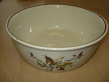 "Royal Doulton Lambethware Wild Cherry serving/fruit bowl OD 9 5/8"" - 24.5CM"