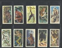 BROOKE BOND - ASIAN WILD LIFE - FULL SET OF 50 CARDS
