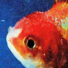 Vince Staples - Big Fish Theory NEW LP