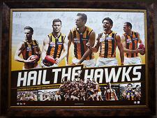 2015 AFL PREMIERS HAWTHORN HAWKS 'HAIL THE HAWKS' OFFICIAL SIGNED PRINT FRAMED