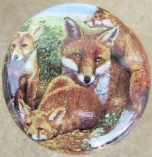 Cabinet Knobs Knob w/ Fox Family Red Wildlife