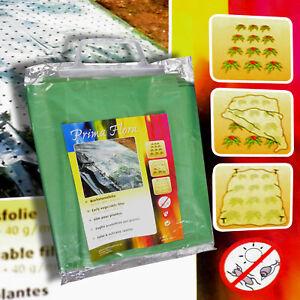 10m² Pflanzfolie grün gelocht Frühbeetfolie Pflanzenfolie Pflanzenschutz Flora