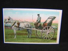 Antique POSTCARD Caleche Horse Buggy QUEBEC, CANADA