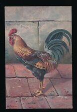Birds COCKEREL ref #4 artist Schonian drawn c1920/40s? PPC PPC