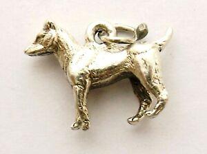 Long Dog Canino Animal Pendientes de plata esterlina 925 en una caja de regalo