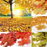50/100pcs Fall Silk Leaves Wedding Party Favor Autumn Maple Leaf Decorations Set