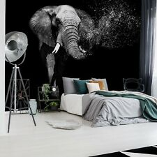 Black And White Elephant Photo Wallpaper Wall Mural Fleece Easy-Install Paper